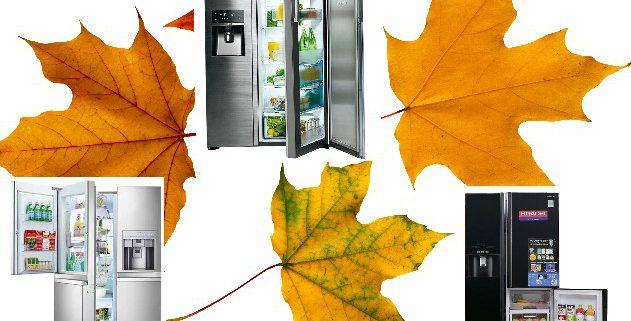 فروش پاییزه انواع یخچال ساید بای ساید در بانه